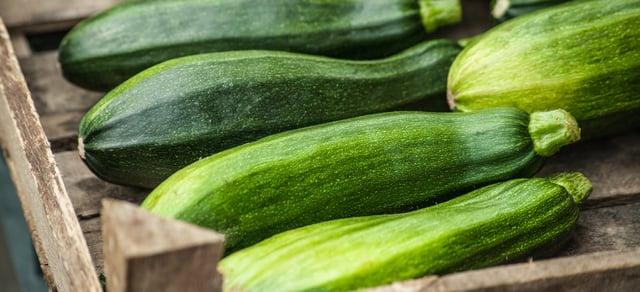 ZucchiniHeader
